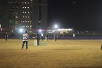 Professor Cricket Match